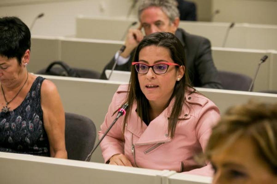 Castilla exige al Estado mejoras en la conectividad aérea con La Gomera